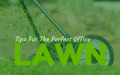Tips For The Perfect Office Lawn