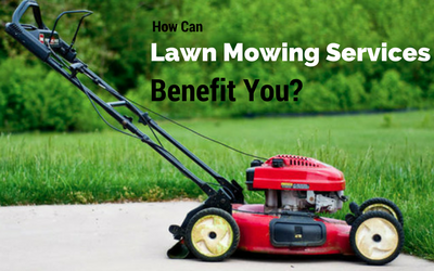 How Can Lawn Mowing Services Benefit You?