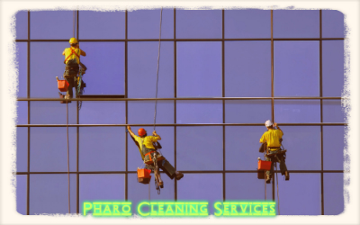 Qualities of a Professional Window Cleaning Service