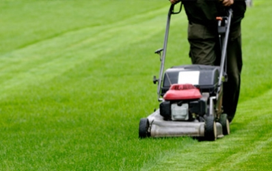 How To Care For A Lawn During Summer?