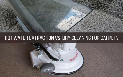 Hot Water Extraction vs. Dry Cleaning For Carpets